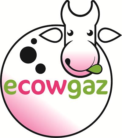 Ecowgaz